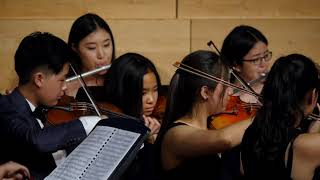Symphony No. 1 in D, I. Allegro molto / Gounod - Camerata Youth Orchestra