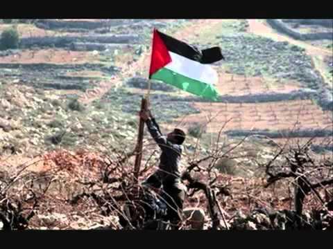 Wave your flag Palestine - ronaldo, kanoute