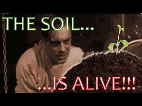 The Soil Is Alive! (Soil Education)