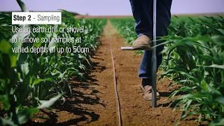 Soil Moisture monitoring |  Netafim