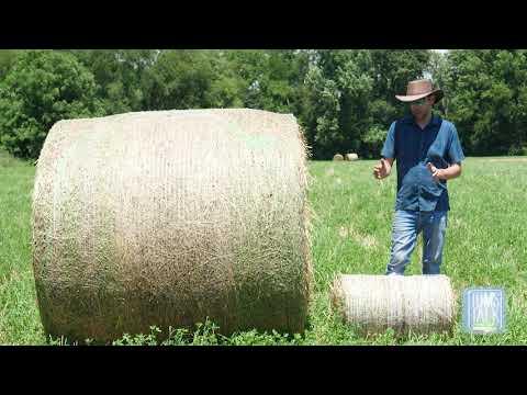 Tom's Talk: Big Bales Vs Small Bales