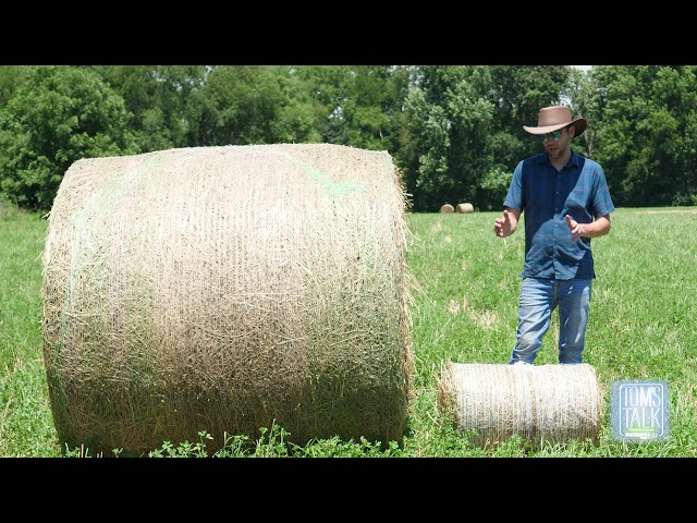 Tom's Talk: Big Bales vs Small Bales