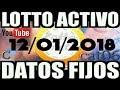 LOTTO ACTIVO DATOS FIJOS PARA GANAR  12/01/2018 cat06