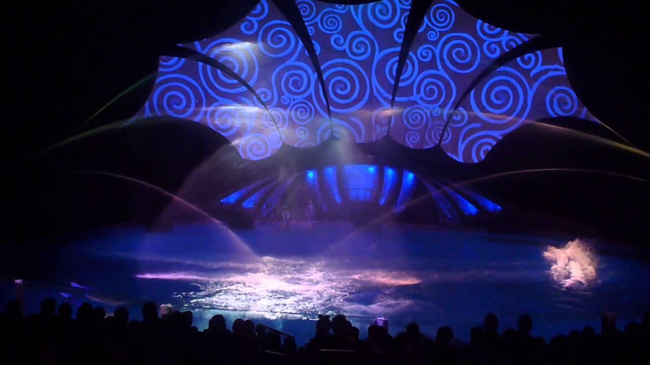 Dolphin Show finale at Georgia Aquarium 1-11-15 - ViYoutube
