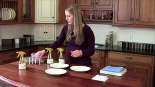 Norwex Chicken Demo; Enviro Cloth Vs Vinegar, All Purpose Cleaner