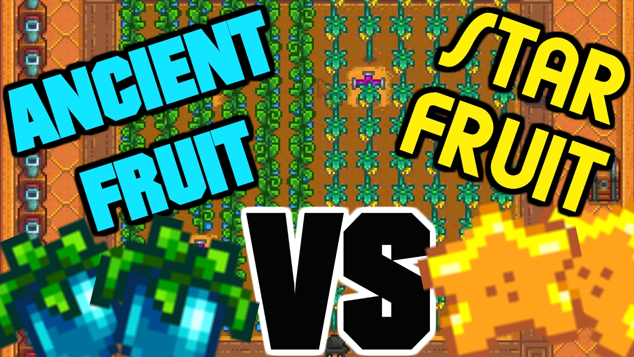Ancient Fruit Vs Starfruit Stardew Valley Tips Tricks Youtube The official wiki for stardew valley made by the stardew valley collector's edition launches today for pc and nintendo switch! ancient fruit vs starfruit stardew valley tips tricks