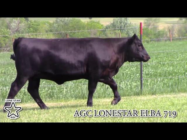 AGC Lonestar Elba  719