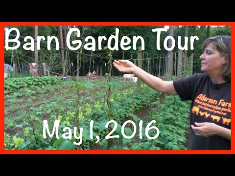 "Garden Express - Alderman Farms ""Barn Garden"" Tour (May 1, 2016)"