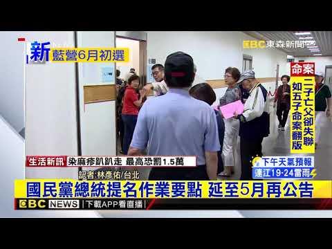 最新》國民黨總統提名作業要點 延至5月再公告