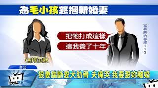 20170826中天新聞 愛狗遭妻踹斷肋骨 夫暴怒痛毆新婚妻