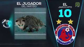 El Tlacuache | El jugador del partido Veracruz vs Puebla Clausura 2019