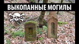 Коп в лесу, заброшенное кладбище