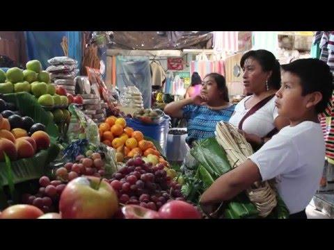 AromaVentures: Antigua, Guatemala