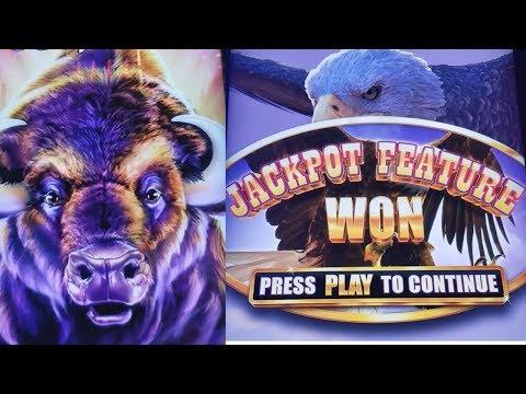 Buffalo Grand Slot Machine Max Bet Bonuses Won & Nice Line Hit   Live Aristocrat Slot Play