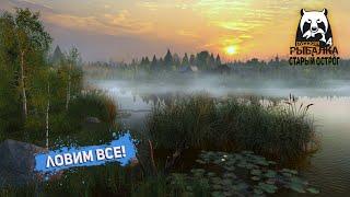 Русская рыбалка 4: Ловим все!