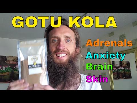 Gotu Kola - For Clarity & Focus, Adrenals, Stress Relief, Circulation, Stress, Skin, Veins & Healing