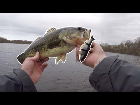Spring SWIMBAIT Bass Fishing!
