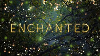 Audiomachine Curated Collection - Enchanted