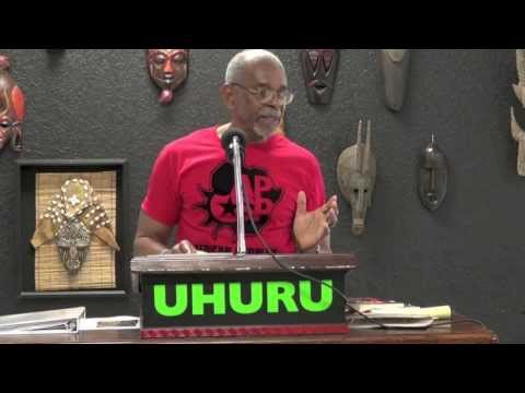 APSP - PE Series - Introduction to African People's Socialist Party - A Brief History
