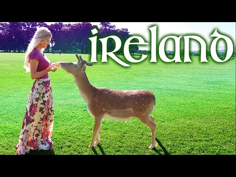 Ireland Travel Guide Vlog Vacation Trip Things to do in Dubl