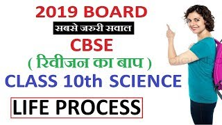 Life Processes | 2019 Board Questions | 10th Science Most Important