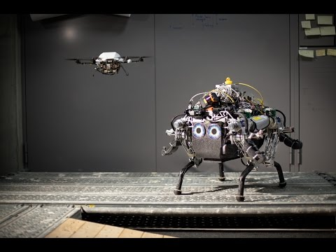 Collaborative Navigation for Flying and Walking Robots