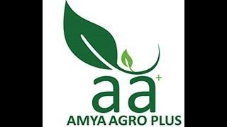 AMYA AGRO PLUS LIMITED