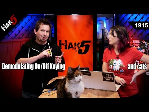Demodulating On / Off Keying... and Cats - Hak5 1915