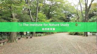 The Institute for Nature Study (自然教育園)