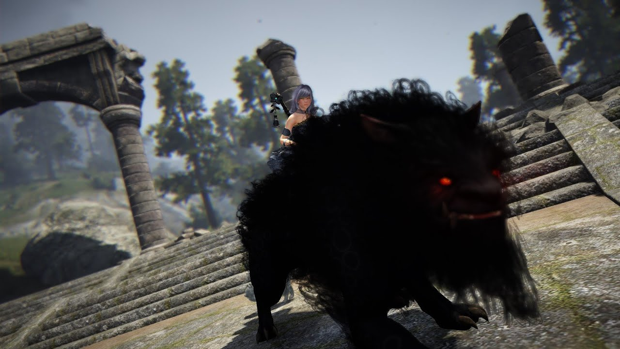 Black Desert PvP Gameplay Solo and Team Fights
