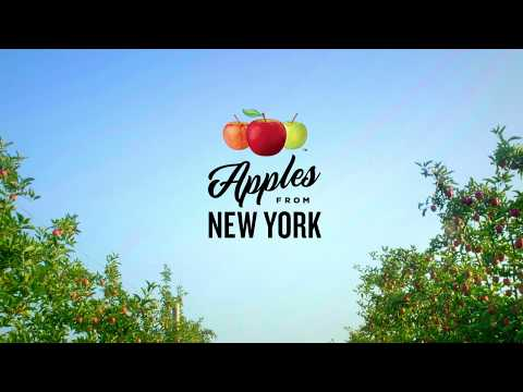 Justin The Web Guy - Not Only Are Apples Good For You They Are Good For New York State's Economy