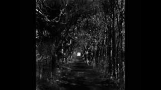 Var inte rädd för mörkret av Erik Blomberg