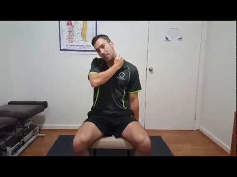 Download How to stretch your scalene muscles
