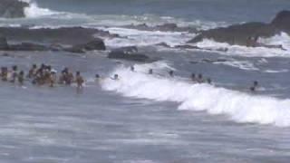 surf kamal 1