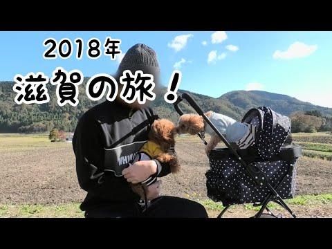 滋賀旅行�愛犬�フレン�ディナーを楽�む♪�ドッグラン�� トイプードル�Taruto&Rasuku
