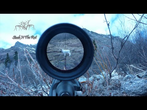 50 BEST HUNTING KILL SHOTS COMPILATION!!! Stuck N The Rut