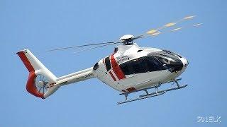 エアバス・ヘリコプターズEC135P3(JA129D)・名古屋2019.08.13