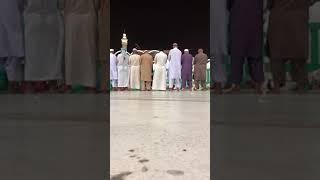 عشائيه خاشعه من سورة آل عمران للشيخ ماهر المعيقلي 🕋🌸🍃