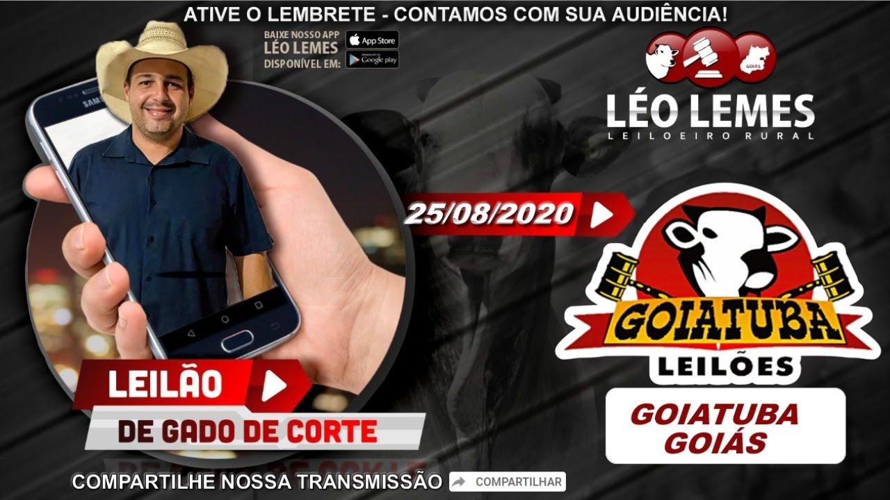 Leilão de Gado de Corte em Goiás - Goiatuba Leilões - 15/09/2020 | Leilão Ao Vivo