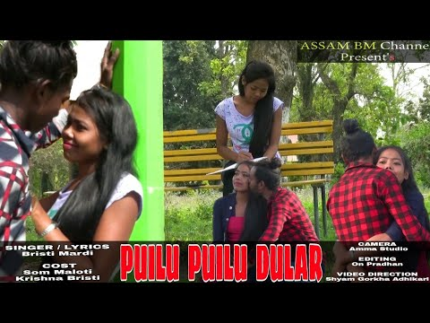 New Santali Hit Video Song...Puilu Puilu Dular..By Bristi Mardi.(2019)