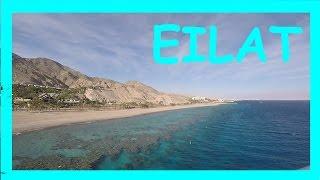 EILAT / ЭЙЛАТ / NURKA VLOGS / Part 2 /Океанариум, акулы, закат. / Oceanarium, sharks, sunset.