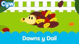 Cân Dawns y Dail | The Cyw Autumn Song