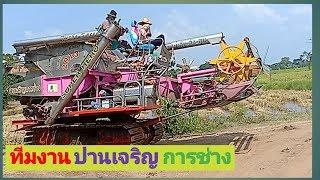 รถเกี่ยวข้าวแรงๆ-รถเกี่ยวนวดข้าว-ปานเจริญ-การช่าง-combine-harvester