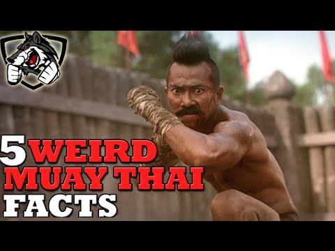 5 Crazy Muay Thai Facts You've Never Heard!