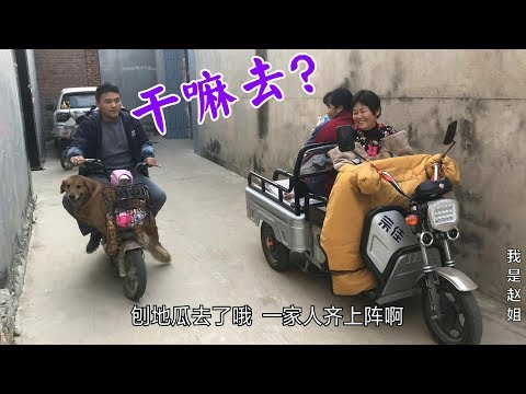 兒媳抱孩子孫子載狗狗,婆婆一家齊上陣去幹啥,農村生活充滿樂趣【我是趙姐】