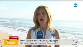 ОПАСНО МОРЕ: Как да се предпазим от мъртво вълнение - Здравей, България (13.08.2018г.)