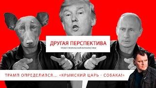 Трамп определился… «Крымский царь - собака!». | «Другая Перспектива»