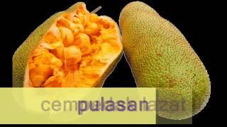 LAGU KSSR THN 3- Buah Tempatan Malaysia