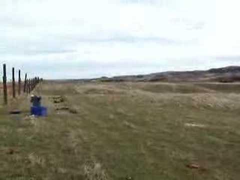 firing the rocket net