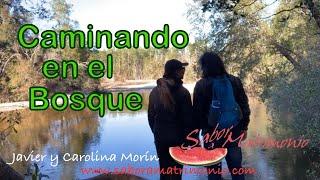 """Javier Morín Rodríguez Vlog """"Caminando en el Bosque"""""""